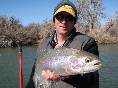 Rainbow caught on the lower Bighorn.  Two Leggins to the Lodge.