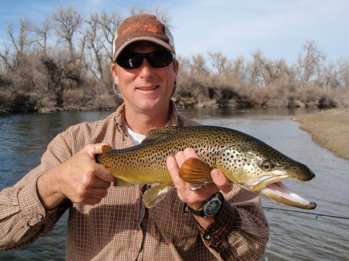 Bighorn river fishing report montana fly fishing bird for Bighorn river fishing report