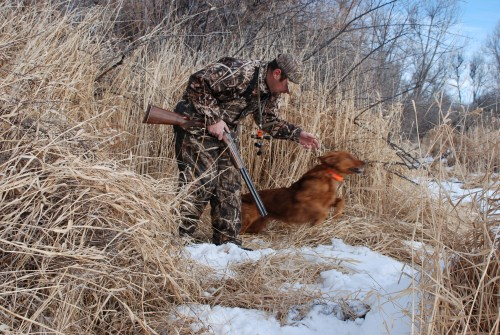 Chief and I hunting geese near Billings.