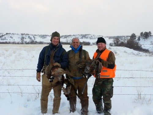 Bird Hunting in South Central Montana