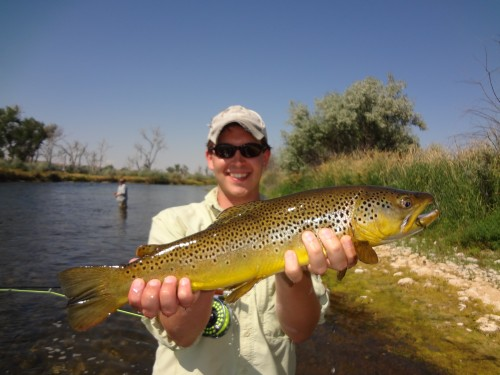 Montana bighorn river fly fishing 2012 montana fly for Bighorn river fly fishing